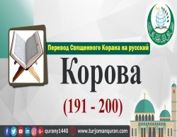 Перевод Священного Корана на русский -   2 – КОРОВА - (191 - 200)